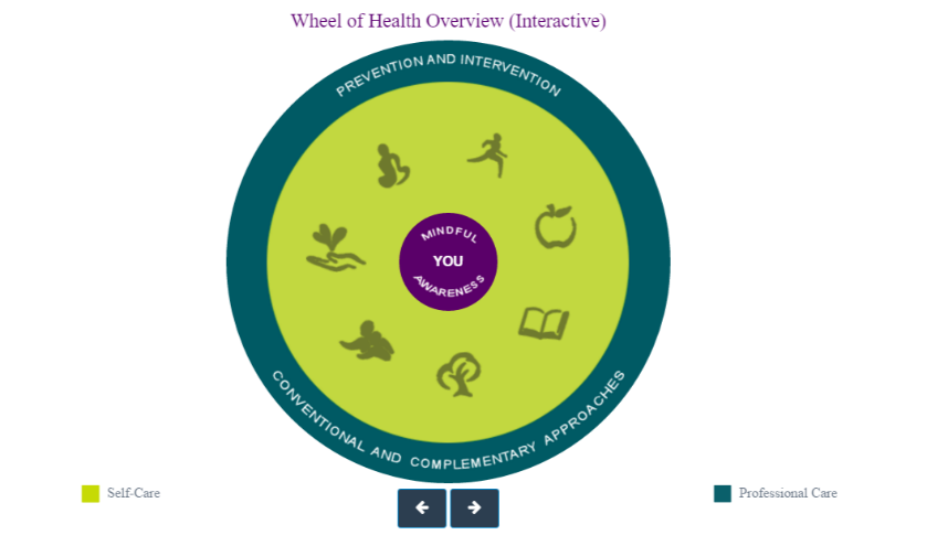 GOM Wheel of Health and Mindful Awareness